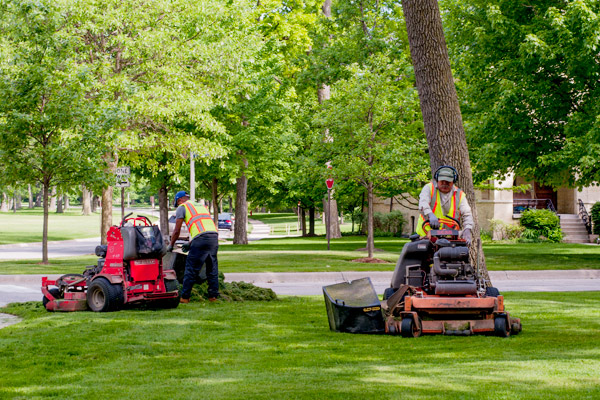 Landscaping Jobs at Moore