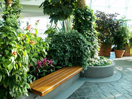 Interiorscapes plant design