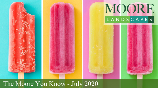 July 2020 Moore You Know Newsletter