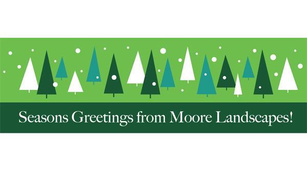 December 2020 Moore You Know Newsletter